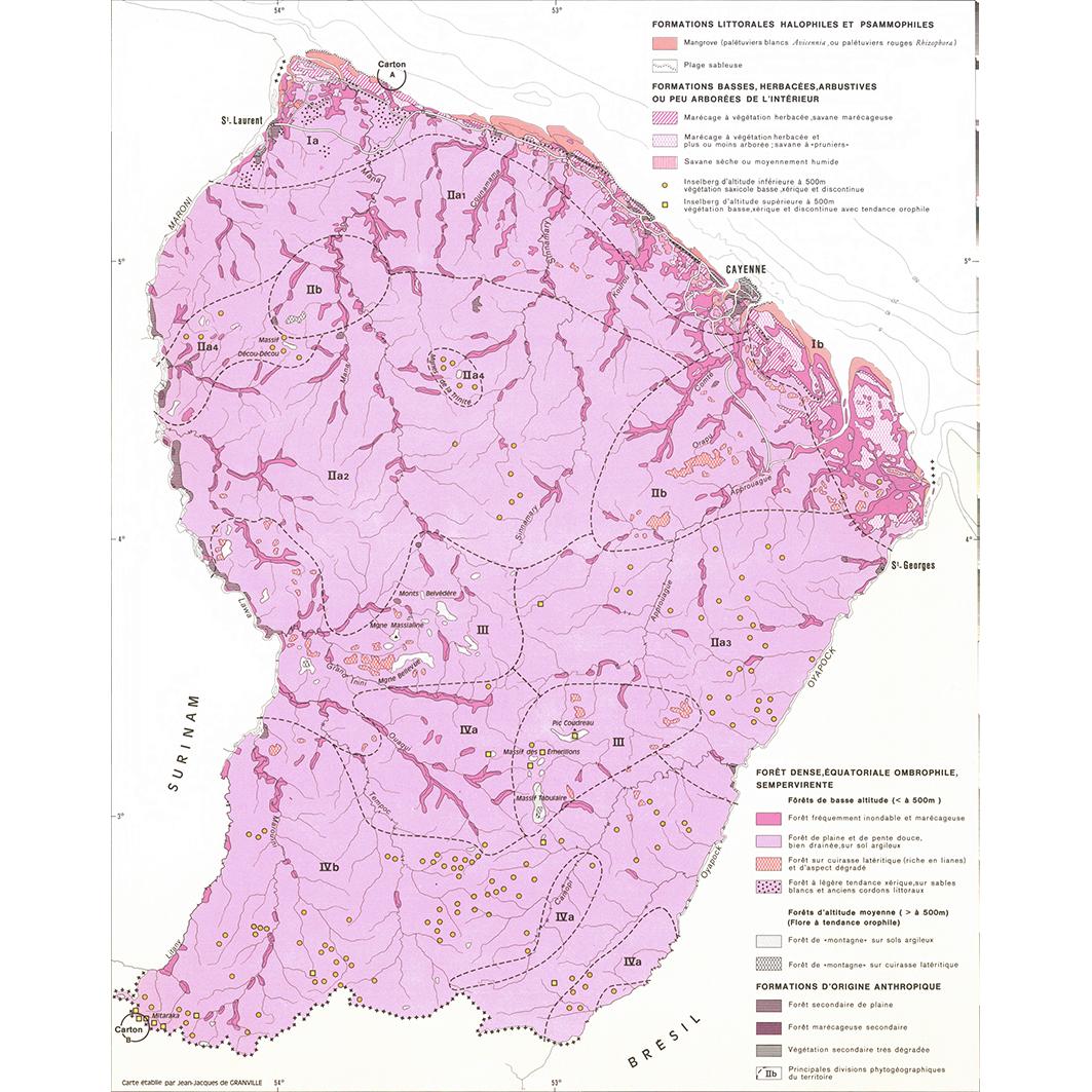 La Guyane : planche 12 : végétation